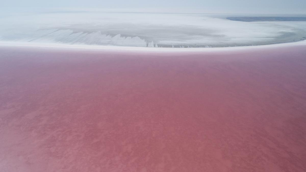 Tuz Gölü pembeye büründü! - Resim: 1