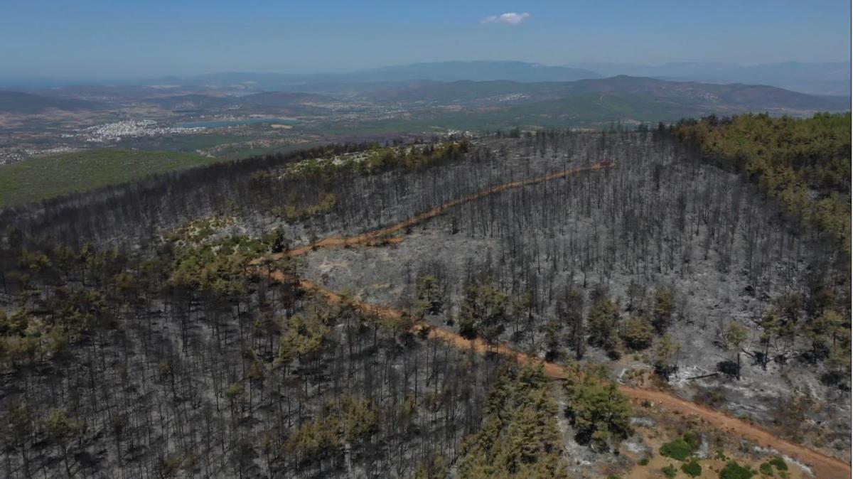 Bodrum'daki yangından geriye bu görüntü kaldı - Resim: 1