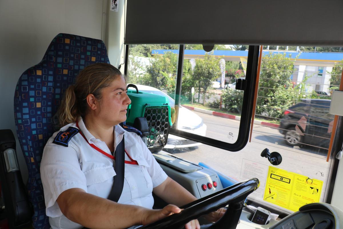 Engelli iki yavru kedisiyle halk otobüsü şoförlüğü yapıyor - Resim: 1