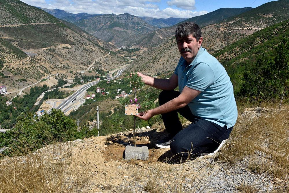 Torul'da her yeni doğan bebek için 1 fidan dikiliyor - Resim: 1