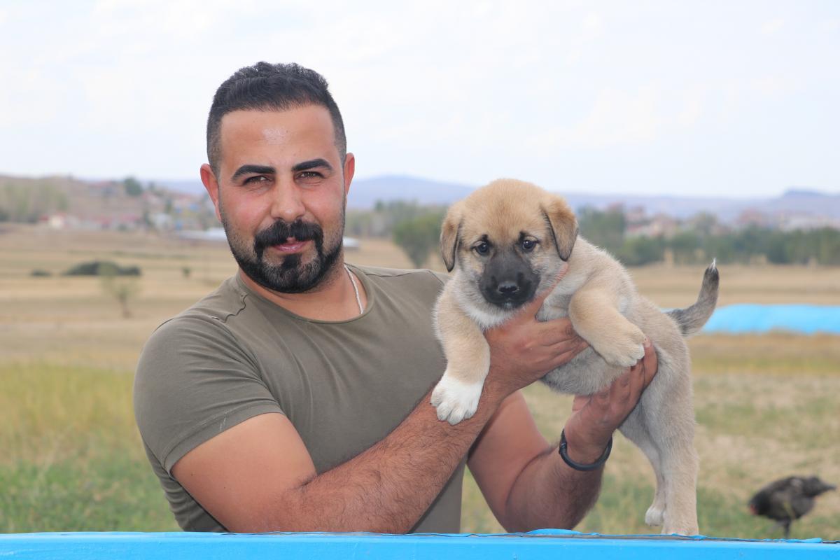 Türk sınırlarını Kangallar koruyacak - Resim: 1