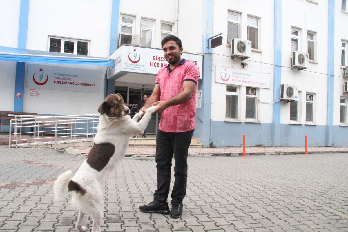 'Çakır' hastane kapısından 20 gündür ayrılmıyor! Tedavi gören sahibini bekliyor - Resim: 1
