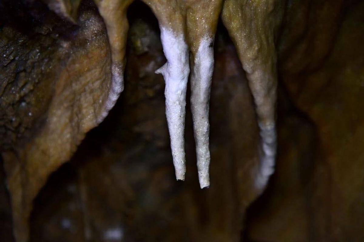 Elazığ'da keşfedilen mağara doğal güzelliğiyle hayran bırakıyor - Resim: 3