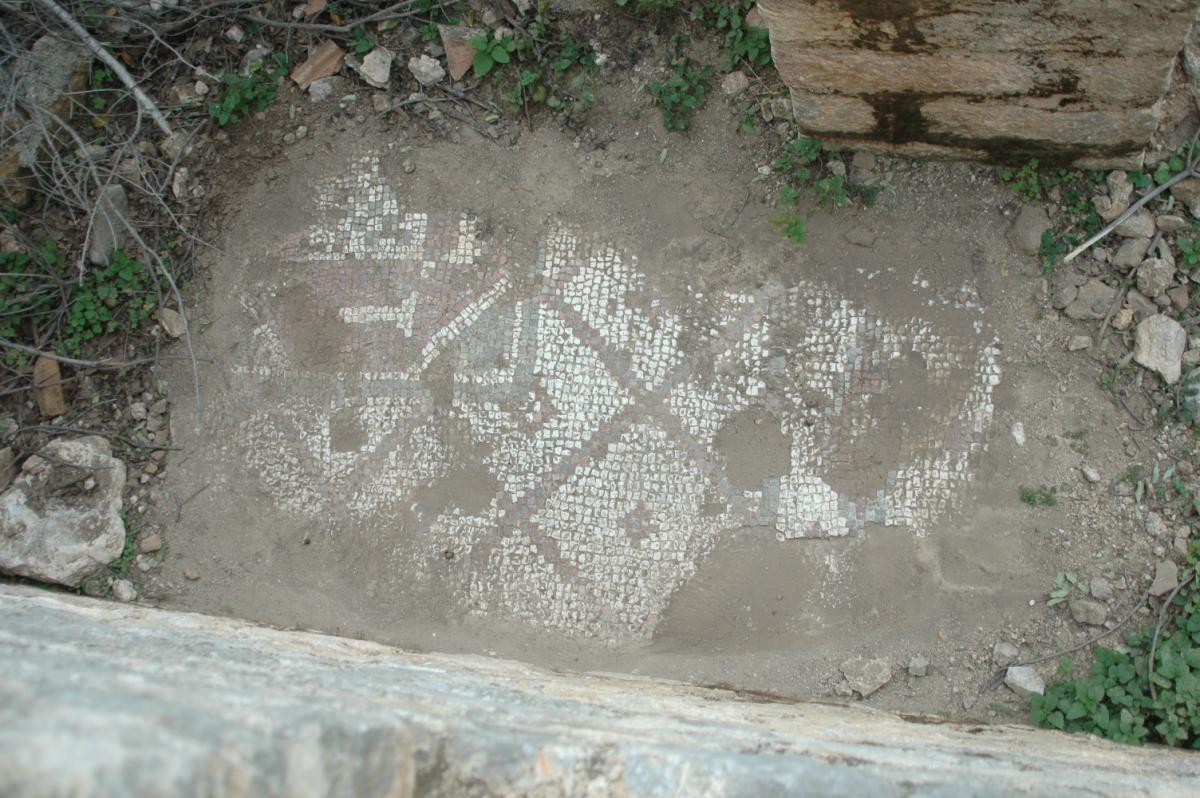 Keçileri otlatırken tarihi hamam ve kilise kalıntıları buldu - Resim: 1