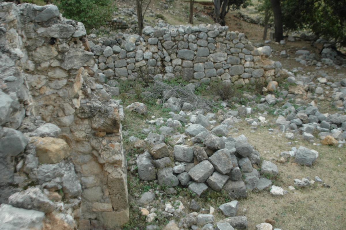 Keçileri otlatırken tarihi hamam ve kilise kalıntıları buldu - Resim: 2