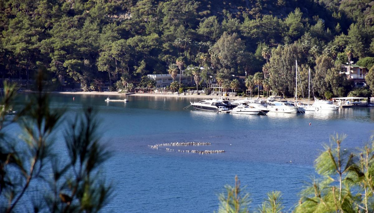 Marmaris'te deniz suyu çekildi, adacıklar oluştu - Resim: 4