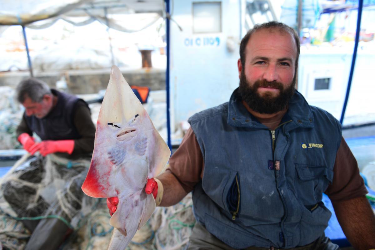Balıkçıların yeni kabusu: İnsan yüzlü sapan balığı - Resim: 1