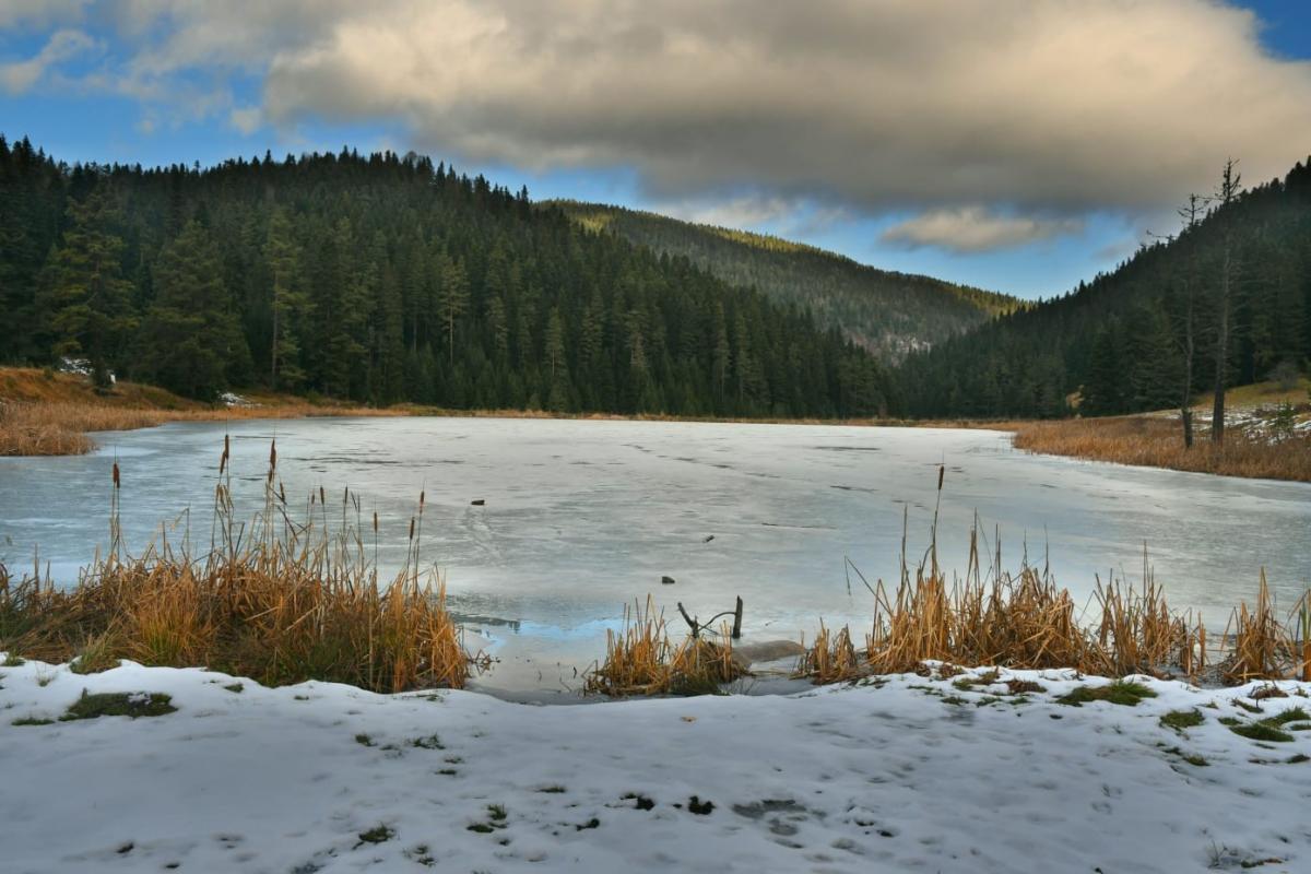 Eğriova Göleti buz tuttu - Resim: 1