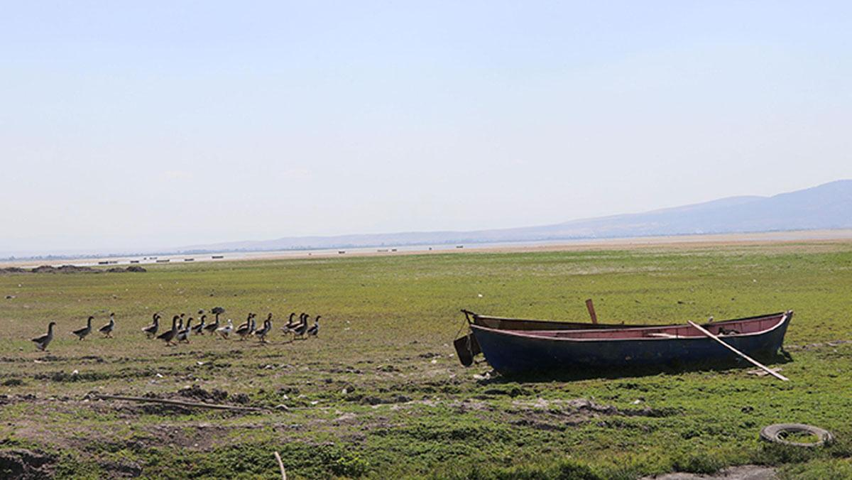 Nilüferleriyle ünlü Işıklı Gölü'nde tehlike çanları