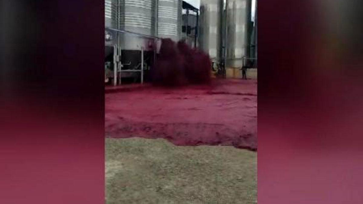 Şarap tankı patladı, 50 bin litre çevreye yayıldı