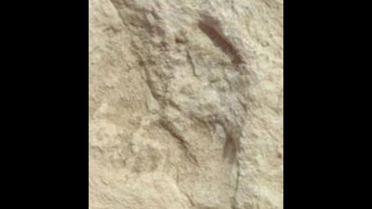 120 bin yıllık ayak izi keşfedildi