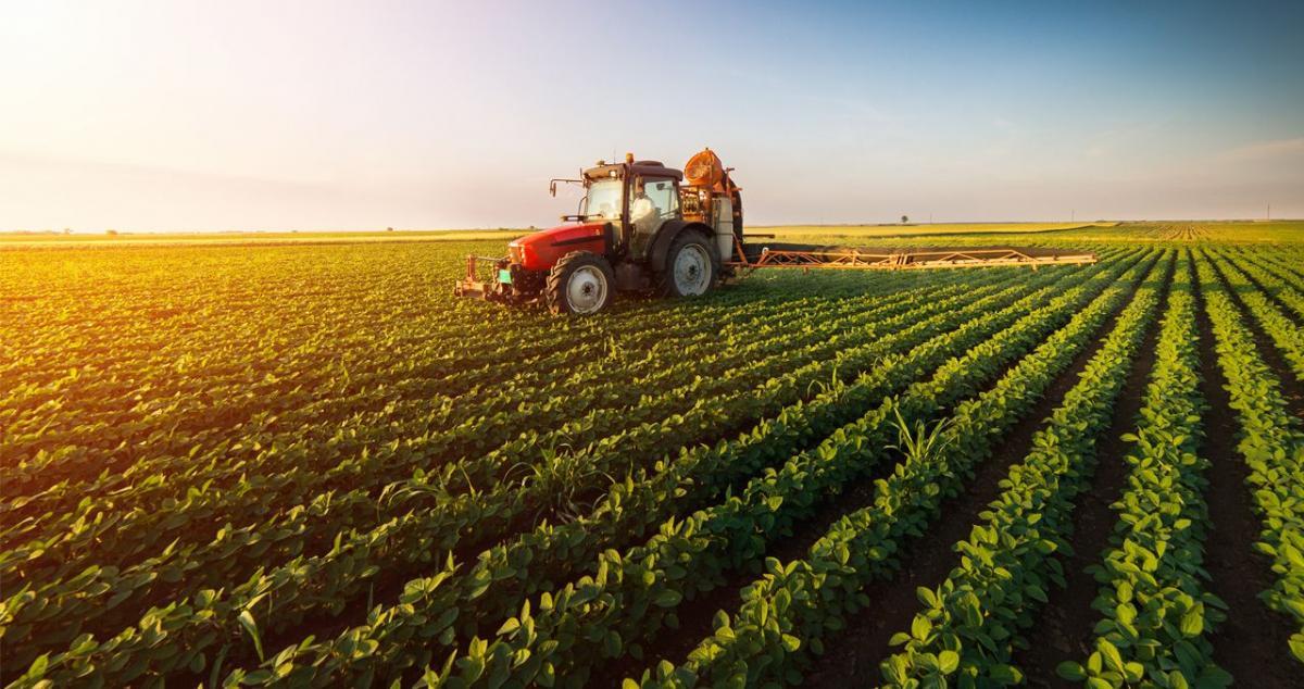 Tarım Kredi, 2.5 milyar liralık ürün alacak