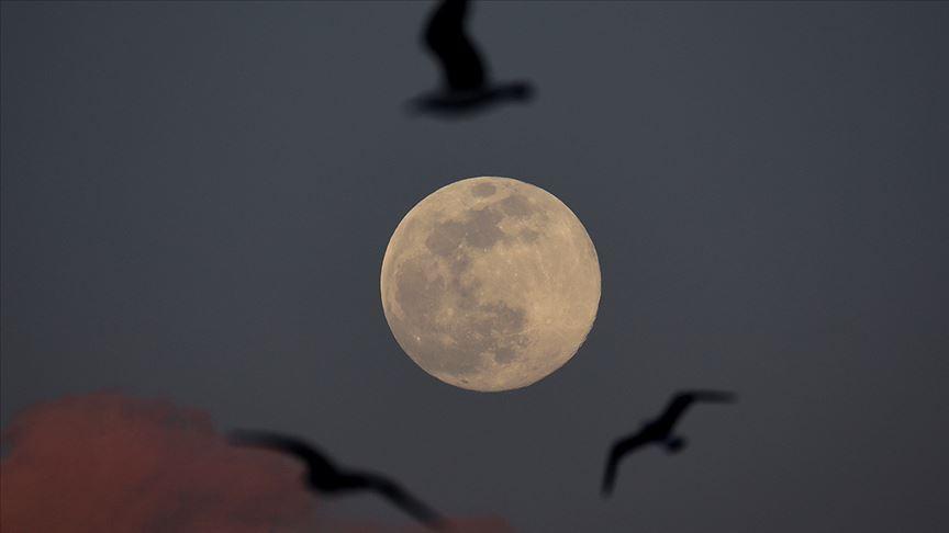 NASA'dan 'heyecan verici keşif' duyurusu: Ay'ın güneşe bakan yüzeyinde su bulundu