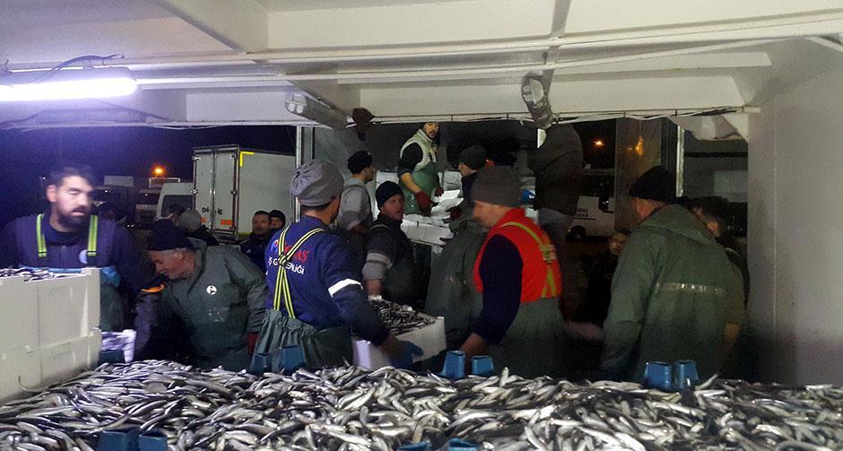 Balıkçılardan yasak dışında kalan bölgeye akın