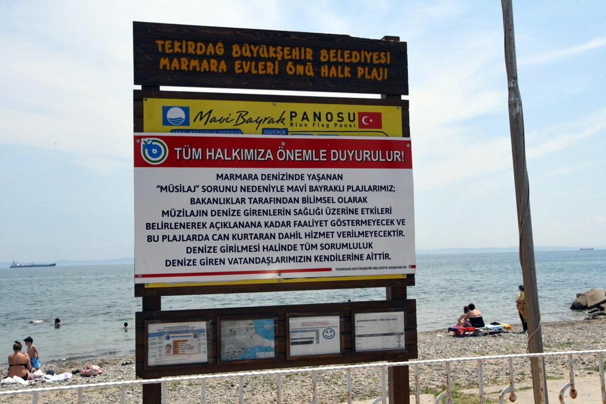 Sahillerde müsilaj kabusu! Darıca'da yasak, Tekirdağ'da uyarı: Sorumluluk vatandaşlarımıza aittir