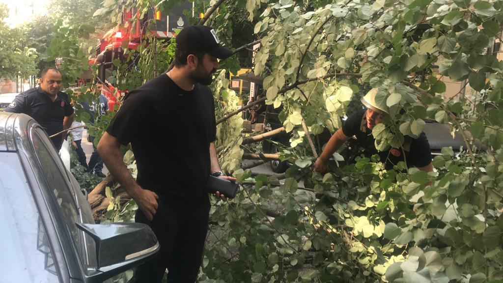 Ünlü oyuncu Tolga Sala lüks aracının üzerine ağaç devrildi