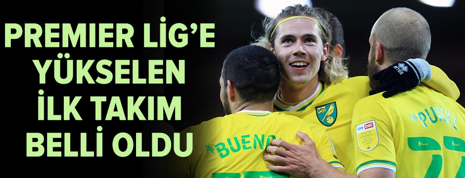 Premier Lig'e yükselen ilk takım Norwich City